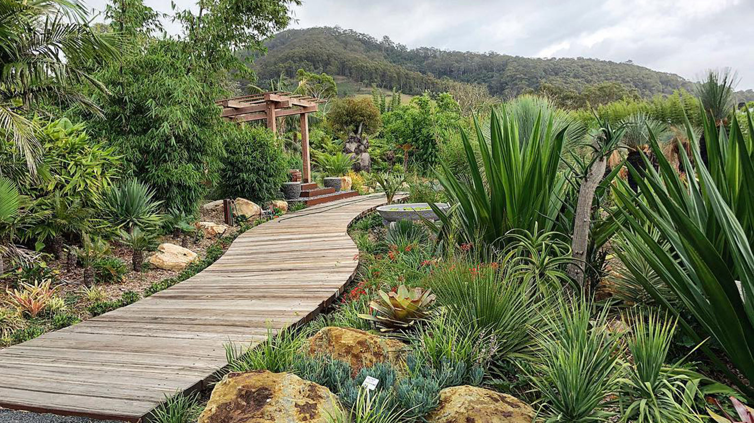 Landscaping Services – Bamboo South Coast