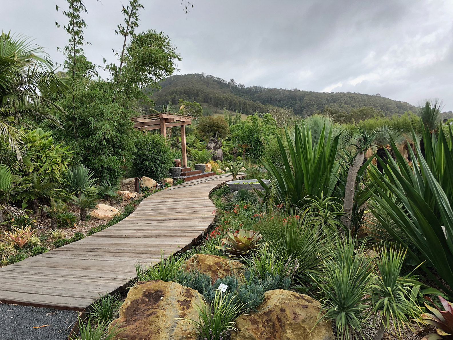 Landscape Design and Construction Berry by Bamboo South Coast