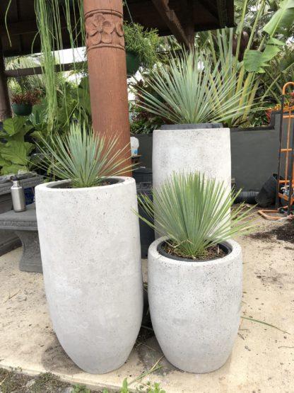 Light Concrete planters cannon