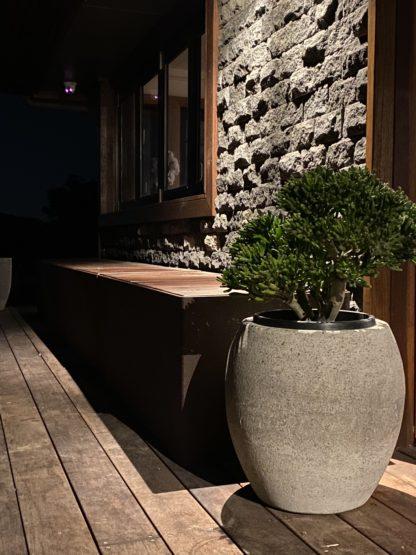 Concrete honed pot planter 45cm x 45cm showing off crassula golum