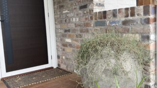 "60cm concrete ""Ball"" pot installed on front door with Delasperma cooperii"